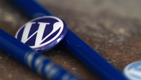 Conoscere WordPress: il CMS più utilizzato al mondo per realizzare siti